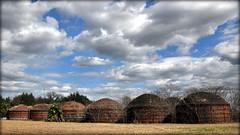 Wintered Kilns In Romeo (gatorgalpics) Tags: kilns florida romeo fl marioncounty us41 charcoalkilns pioneercharcoalcompany 291921008 824381723