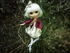 (Mina Mimosa) Tags: ballet sweater ballerina doll crochet noel mohair pullip pere