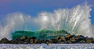 Venice Beach Surf.