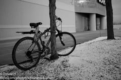 Bike (Kenjis9965) Tags: life street winter house snow ice bike mailbox mall bench lumix photography frozen leaf still snowman pretty sitting berries tank walk sears aircraft moose tools panasonic ii doorknob duster m42 walden around 20mm 40mm anti asph galleria drill cannons bofors f17 spaa gx7
