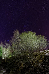 Nuit toile  St Pierre dels Forats (Olivier 38) Tags: longexposure night nightscape astrophotography astronomy nuit astronomie poselongue paysagedenuit