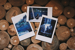 digital (januarychild) Tags: france nature digital memories wilderness auvergne instax escaping