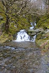 Elan Valley Stream (Coastal Co) Tags: uk wales stream aberystwyth 2016 elanvalley