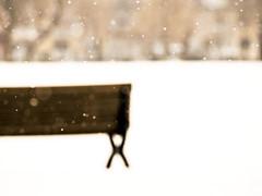 floconnade sur Montréal (photosgabrielle) Tags: winter snow bench montreal hiver rosemont neige parc banc photosgabrielle