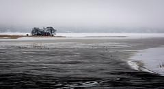 An Isolated Cottage (ristoranta) Tags: winter ice water finland island helsinki vanhankaupunginlahti cottage fi helsingfors talvi mkki lintu saari uusimaa kaupunki piv naakka vesij nikond7100tamron16300mmf3563