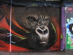 Olivier Roubieu graffiti, Leake Street (duncan) Tags: graffiti gorilla shiz leakestreet mrshiz olivierroubieu