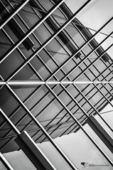 Of Reflections & Intersections (REA_26) Tags: blackandwhite bw abstract reflection geometric lines reflections blackwhite geometry symmetry symmetrical intersection intersecting