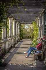 Pergola Repose. (Stephen Reed) Tags: london gardens spring nikon hampsteadheath hdr treys pergola d7000 lightroom4