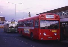 EGN636J (21c101) Tags: egn636j aec londontransport sms636 1971 swift 4mp2r mcw airportexpress heathrowairport londonheathrow aecswift busstation