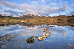 Loch Achray, Scotland (J McSporran) Tags: landscape scotland trossachs lochachray