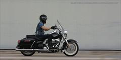 Harley Davidson, Chek Lap Kok, Hong Kong (Daryl Chapman Photography) Tags: china canon hongkong harley motorbike american harleydavidson motorcycle 5d pan panning davidson sar mkiii 70200l