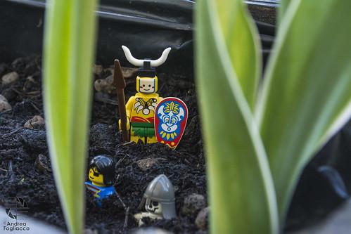 Legoin Real World