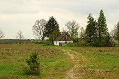 back to the past (JoannaRB2009) Tags: trees house building nature landscape countryside spring view path poland polska olenica lodzkie dzkie