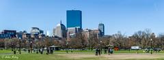 Boston 17Apr16 15 (Helen Mulvey) Tags: blue sky panorama usa sunshine boston bostoncommon bostonpublicgarden