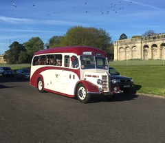 London Brighton 2016 (South Strand Trucking) Tags: bus vintage bedford coach lorry ob hcvs