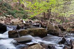 Santa Fe del Montseny (Gatodidi) Tags: barcelona santa parque rio landscape agua nikon arboles paisaje pantano catalunya fe parc seda catalua rocas piedras cascada paisatge vegetacion montseny d90