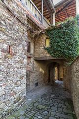 Greve in Chianti -Firenze- Marzo 2016 (Pucci Sauro) Tags: firenze toscana greveinchianti