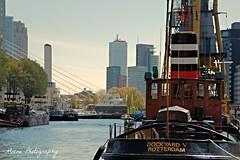 Leuvehaven (Mone-Photography) Tags: city haven holland netherlands architecture boot rotterdam sleep nederland citylife boten 010 towing sleepboot stoomboot jacht leuvehaven roffa
