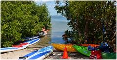 The Getaway Tiki Bar - St Petersburg, Florida (lagergrenjan) Tags: st bar kayak florida getaway board paddle rental petersburg tiki blvd gandy