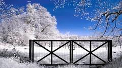 barrire-ir (Yasmine Hens) Tags: blue monochrome nikon europa flickr belgium ngc infrared namur hens yasmine wallonie barrire 720nm infrarouge nikond90 iamflickr flickrunitedaward hensyasmine
