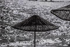 needashadow (debdebe) Tags: blackandwhite bw monochrome umbrella 35mm photography analogue canonae1 filmisnotdead kentmere100
