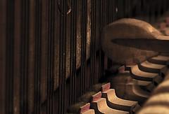 Piano Strings (gus) Tags: blur macro 10 piano strings hmm    pianostrings macromondays 00mmf00 kenko2xnasmacroteleplusmc7 nikond750 beginswiththeletterp