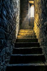 In Savonarola's footsteps (Arutemu) Tags: city light italy canon florence italian europe italia eu medieval tuscany firenze fullframe toscana tamron renaissance 6d palazzovecchio    eos6d