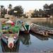 セネガル 画像29