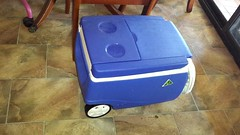 My new esky