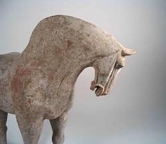 China. Tang Dynasty Pottery Horse 618-906 A.D. (mike catalonian) Tags: china tang ancientfareast