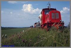 IRR1_89_0040aa (r_walther) Tags: sterreich trolley rhein aut hchst elektrisch vorarlberg schmalspur stromabnehmer 750v irr 760mm transportbahn rheinbhnle internationalerheinregulierung lokelfi