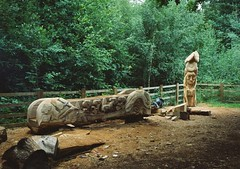 op - beacon wood carvings (johnnytakespictures) Tags: wood art film pen countryside faces kodak leicestershire towers olympus totem carving pole poles analogue halfframe monuments carvings beaconhill countrypark ee3 gold200