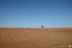 3-Oman-Desert-Marathon-day-2_9521