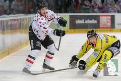 "DEL16 Kölner Haie vs. Krefeld Pinguine 17.01.2016 112.jpg • <a style=""font-size:0.8em;"" href=""http://www.flickr.com/photos/64442770@N03/24310896863/"" target=""_blank"">View on Flickr</a>"