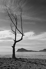 (Egled_Madrid) Tags: blackandwhite bw playa almera cabodegata genoveses octubreenlaplaya