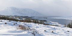 Loch Loyne (Zou san) Tags: winter snow mountains landscape scotland highlands sony highland loch nex3n selp1650