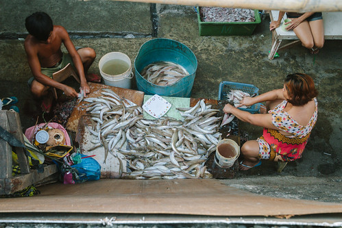 Cleaning Fish, Cebu City Philippines
