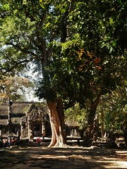 the approach to Banteay Kdei (SM Tham) Tags: trees people stone buildings outdoors temple cambodia khmer path entrance unescoworldheritagesite doorway angkor portico banteaykdei