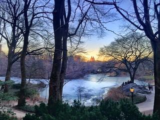 Golden Hour in Central Park.