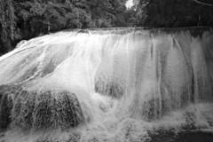 Big Falls (elhawk) Tags: bw mexico waterfall falls chiapas cascadas robertobarrios