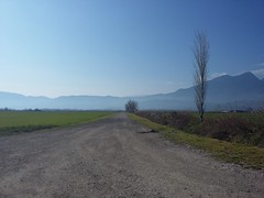 #morning #sun #fields #road #so_close_to_the_city (Simos1968) Tags: road morning sun fields soclosetothecity