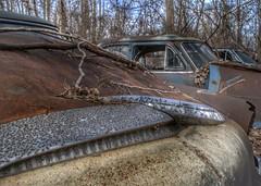 DSC08578.ARW-01 (juice95m3) Tags: abandoned rust vintagecar automobile junkyard oldcars classiccars