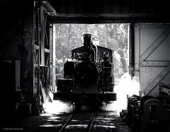 Workshop shunt (michaelgreenhill) Tags: au australia trains victoria steam workshop pbr workshops belgrave puffingbilly