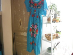 Home away from home (RubyGoes) Tags: door blue summer plant paris france fruit apartment embroidery bowl shelf frock vincennes