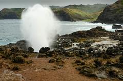 Blowhole in action (seanexmachina) Tags: hawaii maui nakaleleblowhole