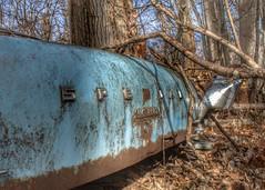 DSC08571.ARW-01 (juice95m3) Tags: abandoned rust vintagecar automobile junkyard oldcars classiccars