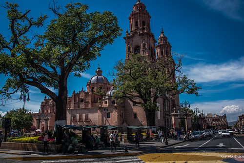 2015 - MEXICO - Morelia - Cathedral of the Divine Savior
