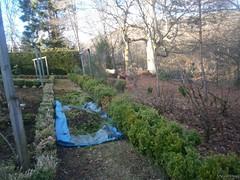My Birnam Garden (8) (StevanHogg05) Tags: scotland dunkeld birnam