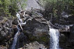 Sundance Canyon DSL3668 (iloleo) Tags: summer canada nature landscape waterfall scenic alberta banffnationalpark logjam sundancecanyon nikond7000
