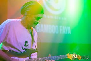 Bamboo Faya - 0359